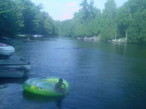 beauiful year round1200 square foot cotage on gull river Kawartha Lakes Peterborough Area image 3