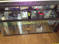 Installation and Service of Saltwater Marine Fish Reef Aquarium