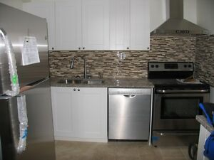 Recently Renovated 3 bdrm apartment in Downtown/Centretown