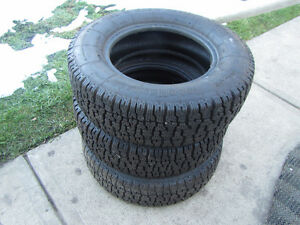 185/70/13 Roadhandler Ice and Snow Radial Tires