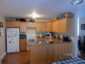 Large, Open Concept 2 bedroom Avail ASAP close to NSCC Kingstec