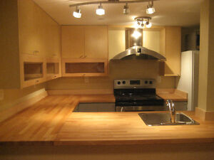 2 bedroom suite in Dunbar available immediately or November 1st