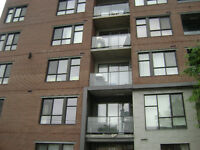 LE WILLIAM GRIFFINTOWN ONE BEDROOMS