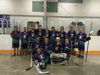Competitive ball hockey league, looking for players & teams