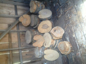 Rustic Tree/Wood Slices for Wedding Centrepieces/Crafts
