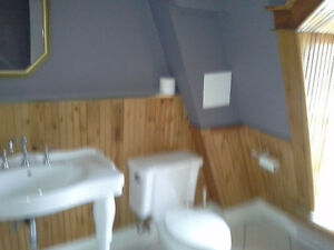 fully furnished 4 bedroom St. John's Newfoundland image 4