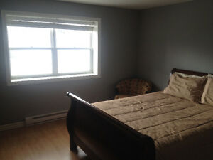 Downtown Pet Friendly CONDO.... FURNISHED!