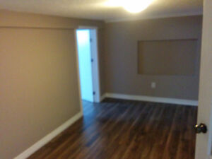 Newly Renovated 1 bedroom apartment available Now