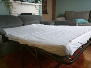 Free Couch.  Pull-out sofa bed.  Pick up only.