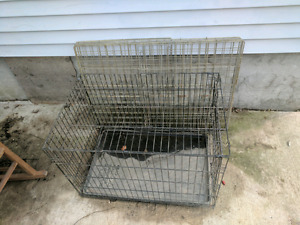 3 large dog cages