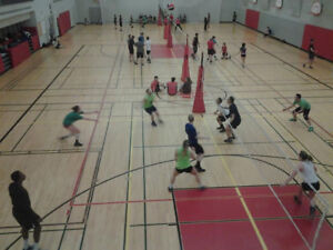 Yonge & Eglinton - Tues Night Co-ed Volleyball league accepting