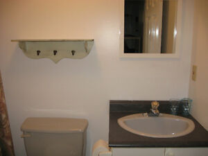 Furnished appartment for rent all included Gatineau Ottawa / Gatineau Area image 4