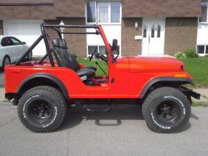 1977 Jeep CJ Autre