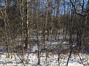 Only 1 hr drive from Down-town Ottawa, 3.8 acres of land in Kaz