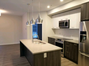 2 bed 2 bath brand new never rented condo for rent