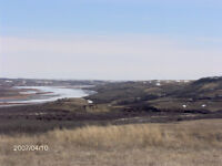 North Sask River Frontage 136 acres