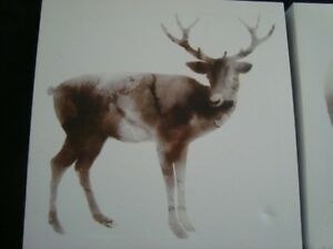 2 canvas pictures of Deer