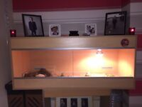 Bearded dragons tank for sale or would swap for a smaller one