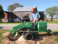 Tree Stump Removal Grinding (226) 444-2028