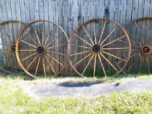 "Grosses roues 44"" selkye wagon cheval"