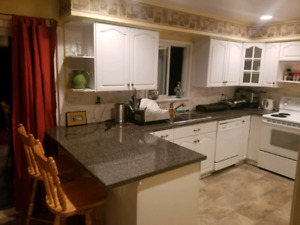 2 Rooms for rent available immediately - 550