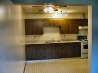 Available NOW! –  1 Bed. Apt - 2 Weeks Free!