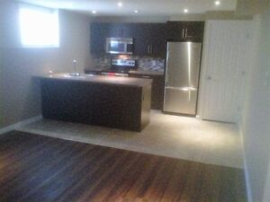 Proffessionaly Renovated OneBedroom Plus Den