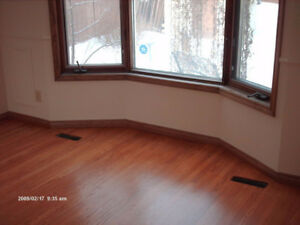 Sander's and Saw's Flooring N Painting