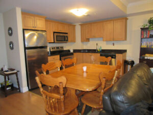 Beautiful 2 Bedroom Apartment in Halifax South End (SUBLET)