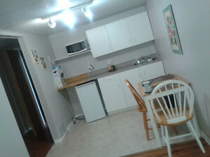 1 Bedroom Apartment For Rent For Sept 1