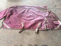 Premier equine rug and liner