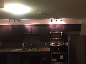 A New Legal Basement Suite with Full Kitchen