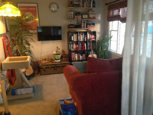 8 Month Sublet with Cat from Sept 1