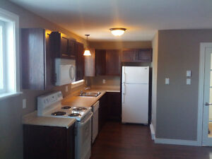 Modern 2-bedroom apartment available St. John's Newfoundland image 6