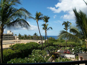 Maui Timeshare 11 Unit Limited Membership Fee Simple