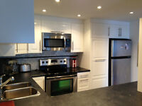 Beautiful renovated condo near downtown Ottawa - $194,500
