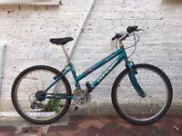 Concept San Diego Mountain Bike
