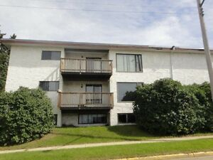 2 bedroom suite in 9 Plex building in Innisfail (BJ Apartments)