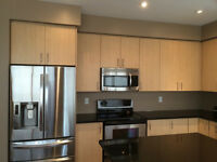 Kitchen Cabinets Complete - Excellent Condition