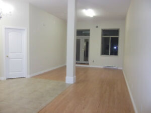 Available June 1st. 1 bedroom + open den Newer apartment