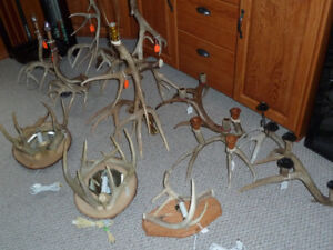 Handcrafted Lighting Fixtures (made from naturally shed antlers)