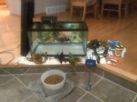 Fish Tank and All Accessories