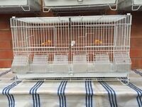 Double breeding cage for sale