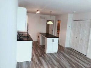 NEW 3 1/2 UPSCALE CONDO FOR RENT (BROSSARD, C Section)
