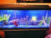 50-55 Gallon Fish Tank and Stand