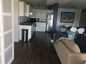 Furnished Short term Lakefront Apartment on Porters Lake!