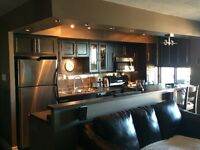 Luxurious Modern Downtown Condo  -- HIGHLY sought after Suite --