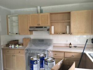 Kitchen Demo - Cabinets, Counter and Sink