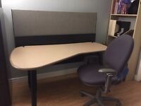 Office Desk and Chair (professional)