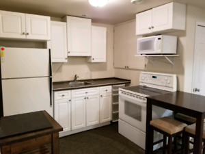 2 Bedroom Southside Basement Suite By Hospital and College